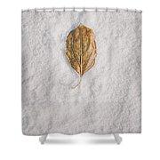 Clash Of Seasons Shower Curtain