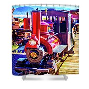 Classic Calico Train Shower Curtain