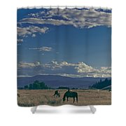 Classic Country Scene Shower Curtain