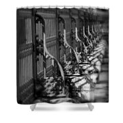 Classic Fence Shower Curtain