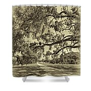 Classic Southern Beauty - Evergreen Plantation -sepia Shower Curtain