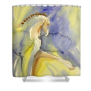 Classical Standards Shower Curtain