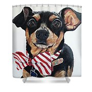 Classy Bowtie Shower Curtain