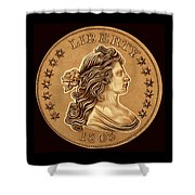 Clay Brown Draped Liberty Shower Curtain
