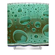 Clean And Green Shower Curtain