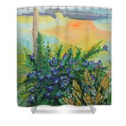 Cleansed Shower Curtain