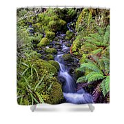 Cleansing The Soul Shower Curtain