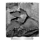 Clear Creek Greenway Two Shower Curtain