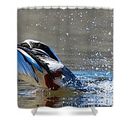 Clear For Takeoff Shower Curtain