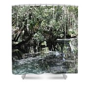 Clear Lithia Springs Shower Curtain