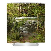 Clear Mountain Stream Shower Curtain