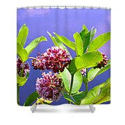 Moment's Clarity Shower Curtain