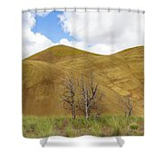 Clear Sky At Painted Hills Shower Curtain