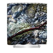 Clear Water Level With Twigs Shower Curtain