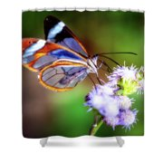 Clear Wings Shower Curtain