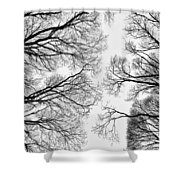 Clearings Shower Curtain