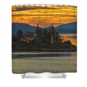 Clearlake Gold Shower Curtain