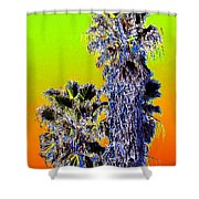 Clearlake Palm Trees Shower Curtain