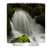 Clearwater Falls 1 Shower Curtain