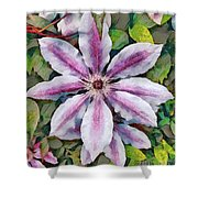 Clematis Camille Shower Curtain