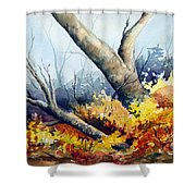 Cletus' Tree Shower Curtain