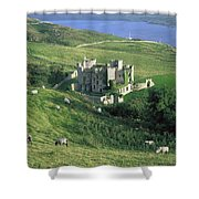 Clifden Castle, Co Galway, Ireland 19th Shower Curtain