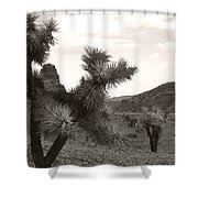 Cliff Between Joshua Shower Curtain