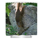 Cliff Hanger Shower Curtain