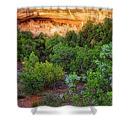 Cliff Palace At Mesa Verde National Park - Colorado Shower Curtain