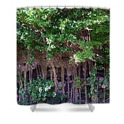 Cliff Side North Shore Kauai Hawaii Shower Curtain