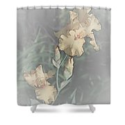 Climbing To The Top Shower Curtain