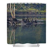 Clinch River Beauty Shower Curtain