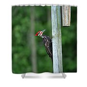 Clinging Shower Curtain