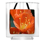 Clivia Tote Bag Shower Curtain