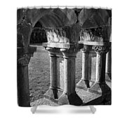 Cloister At Cong Abbey Cong Ireland Shower Curtain
