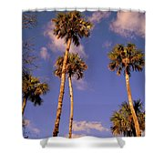 Close To The Clouds Shower Curtain