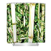 Close Up Big Fresh Bamboo Shower Curtain