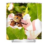 Close Up Bumble Bee Climbing Out Of Hibiscus Flower Shower Curtain