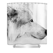 Close Up Encounter Shower Curtain