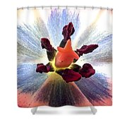 Close Up From A Tulip Flower Shower Curtain