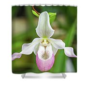 Close Up Of A Orchid Shower Curtain