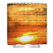 Close-up Of Barbed Wire At Sunset  Shower Curtain