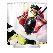 Close Up Of Bumble Bee On Flower Shower Curtain