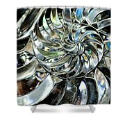 Close-up Of Glass Chambered Nautilus Shower Curtain