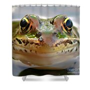 Close-up Of Leopard Frog Shower Curtain