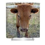 Close Up Of Longhorn Head Through Fence Shower Curtain