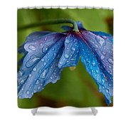 Close-up Of Raindrops On Blue Flowers Shower Curtain