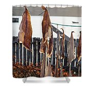 Close Up Of Salt Cod Pieces Drying In Bonavista, Nl, Canada Shower Curtain