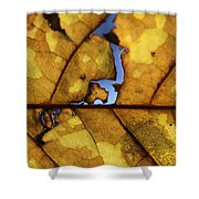 Close Up Of Yellow Leaf Shower Curtain