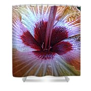 Close-up On Nature Shower Curtain